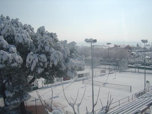 Club Tennis Manersa Nevada 2010